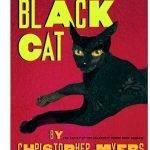 black-cat-by-christopher-myers-summary-writing_2.jpg