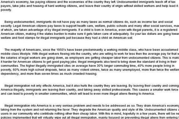 Illegal immigration essay thesis writing Research paper assignments you