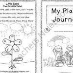 my-plant-journal-kindergarten-writing_1.jpg