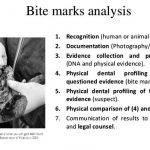 thou-blind-man-s-mark-thesis-proposal_3.jpg