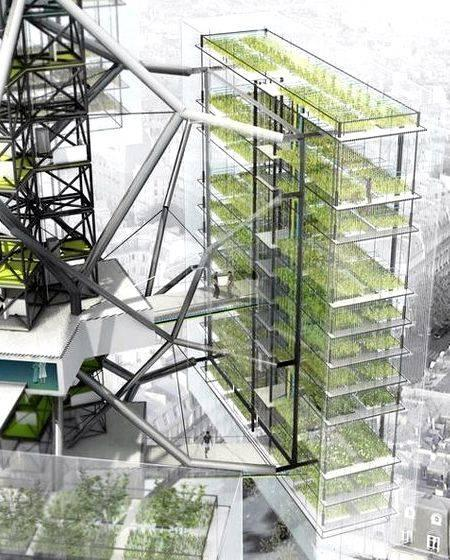 urban design + thesis proposal
