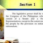 1987-philippine-constitution-article-8-summary_3.jpg