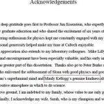 acknowledgement-sample-phd-thesis-dissertation_3.jpg