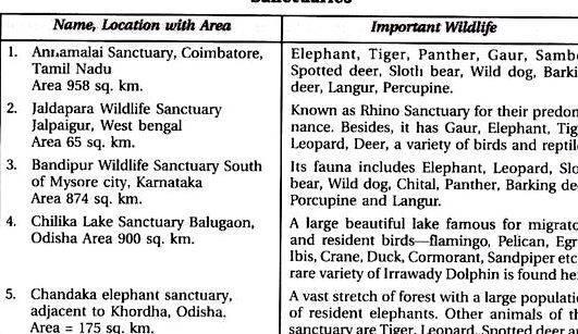Article writing on save wildlife photos bones are