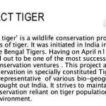 article-writing-on-save-wildlife-poster_2.jpg