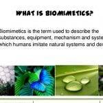 biomimetic-architecture-thesis-proposal-titles_1.jpg