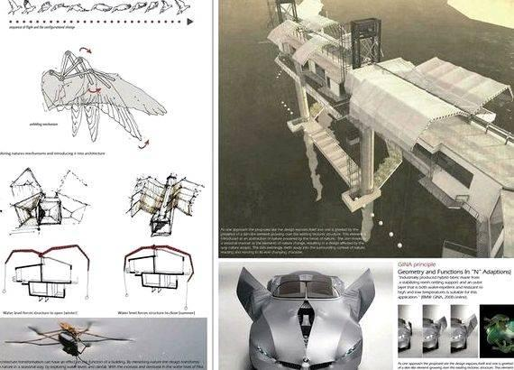 Biomimicry in architecture thesis proposal partial fulfillment from