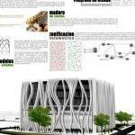 biomimicry-in-architecture-thesis-proposal_3.jpg