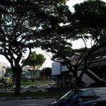 dissertation-help-service-singapore-mrt_2.jpg