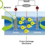fuel-cell-design-thesis-proposal_1.jpg
