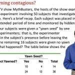 Is yawning contagious mythbusters summary writing