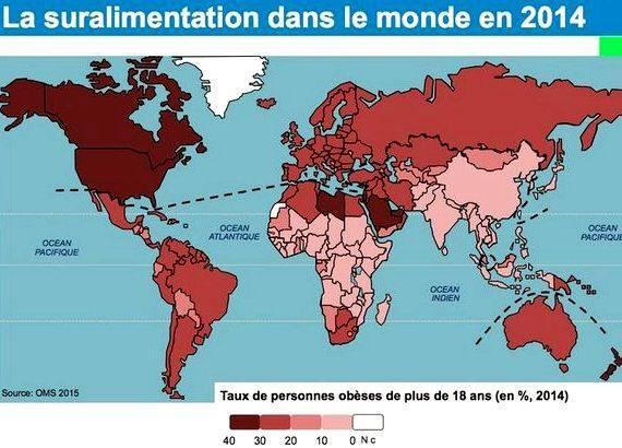 Lafrique dans la mondialisation dissertation writing guide de