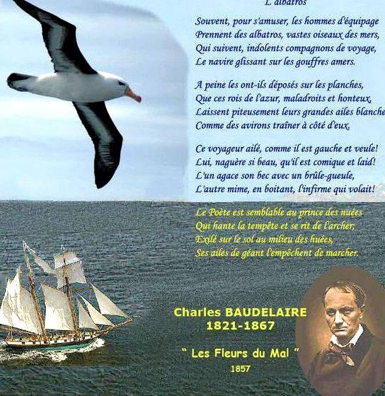 Lalbatros de baudelaire dissertation writing found tons