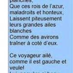 lalbatros-de-baudelaire-dissertation-writing_3.jpg