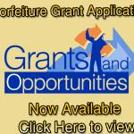 non-profit-grant-writing-services_1.jpg