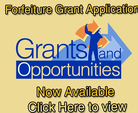 Non profit grant writing services research process