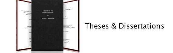 Online the ses and dissertations and the ses more on Conclusions