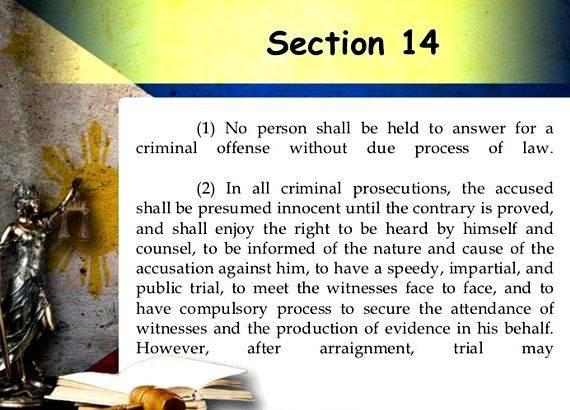 Philippine constitution article 14 summary writing Government in