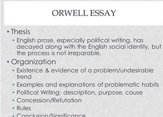 Power of media essay