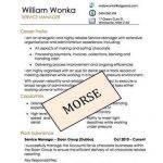 professional-resume-writing-services-mn-dmv_2.jpg