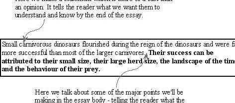 Thesis builder for expository essay writing Your ideas and the