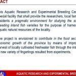 thesis-proposal-defense-presentation-philippines-13_2.jpg