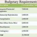 total-budgetary-requirements-thesis-proposal_2.jpg