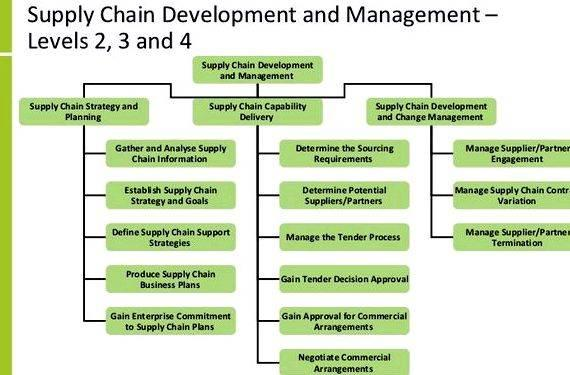 Writing a business plan supply chain It can soar, but it