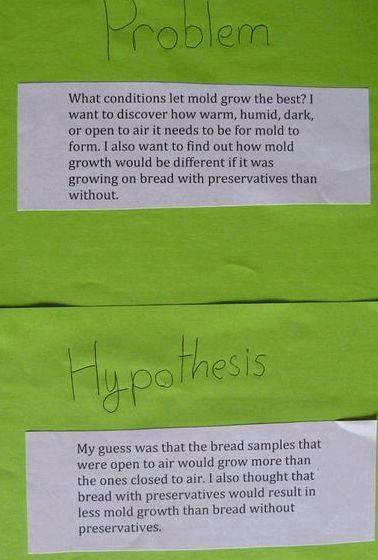 Writing a hypothesis for science fair projects are earthworms